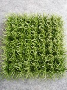Artificial Plants and Flowers of Artificial Grass Gu20170226095759 pictures & photos
