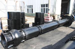 Sewage Water Treatment Pumps pictures & photos
