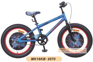 20 Inch 1 Speed Cheap Kids Fat Bike pictures & photos