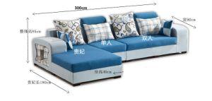 Home Sofa Wooden Frame Living Room Sofa (HX-SL037) pictures & photos