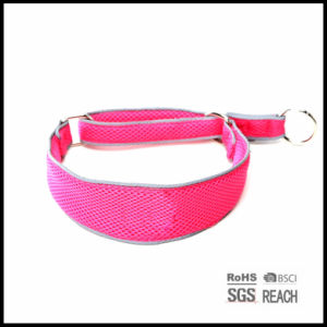 Reflective Air Mesh Breathable Pet Dog Training Collar pictures & photos