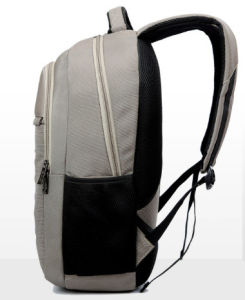 Wholesale Laptop Computer School Outdoor Leisure Ol Backpack Bags pictures & photos