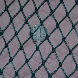 Best Quality Anti Bird Net Made in China pictures & photos