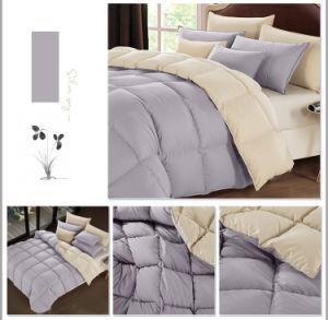 Matching Color 95% Poland White Goose Down Quilt Duvet Comforter pictures & photos