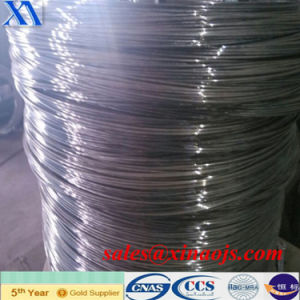 Lower Price and Higher Quality Electro Galvanized Wire (XA-GW005) pictures & photos