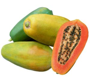 Red Lady Papaya Seeds Red Flesh Oblong/Near Round Fruit High Yield 718