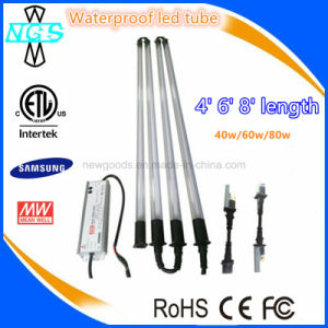 ETL Certified 4FT 6FT 8FT LED Car Wash Lighting pictures & photos