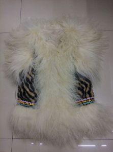 Fashion Fur Vest / Eagle Zebra Vest pictures & photos