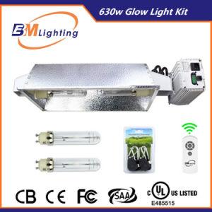 630W (2X315W) CMH Double Output Fixture Grow Light Kit pictures & photos