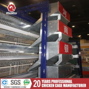 Automatic Poultry Layer H Type/Frame Chicken Battery Cages System pictures & photos