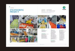 Commercial Potato Peeler/Vegetable Washing Machine pictures & photos