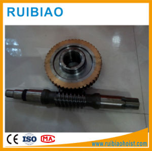 Stainless Steel Worm Shaft for Construction Hoist Gearbox pictures & photos