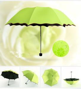 Magic Water Mark Printing Flower Edge Girl′s Dome Shape Folding Umbrella