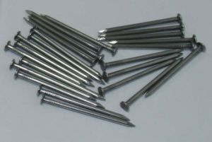 Electro /Hot Dipped Galvanized /Bright Common Nail for Sale pictures & photos