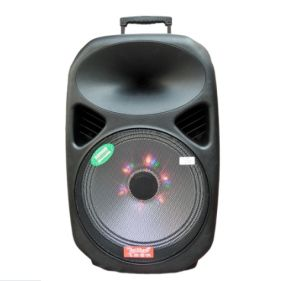 Feiyang/Temeisheng 12inch Portable Active Battery Speaker with Light F28 pictures & photos