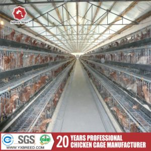 Automatic Poultry Farming Machinery Wire Mesh Battery Cages pictures & photos