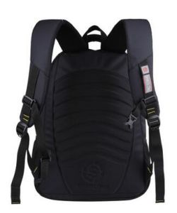 Men′s Backpacks, School Bags, Laptop Backpacks pictures & photos