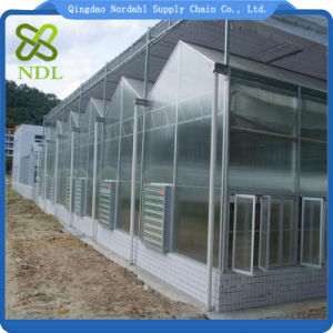 Multi-Span Material PC Sheet Greenhouse for Agricultural pictures & photos