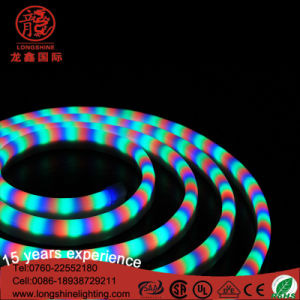 High Quality LED Neon Light pictures & photos