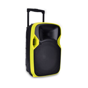 12 Inches Portable Consumer Projection Loudspeaker with Battery pictures & photos