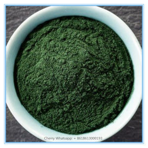 Top Quality Organic Chlorella Powder