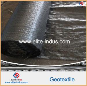 PP Long Fibers Continuous Filament Geotextile Geo Fabric pictures & photos