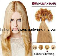 Nail Tip Human Hair Extensions (HN-N-018)
