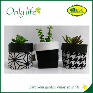 Onlylife Eco-Friendly Fashionable Design Fabric Planter pictures & photos