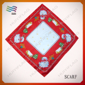 Fashional and Beautiful Printed Square E Neck Scarf (HYS-AF006) pictures & photos