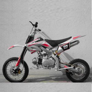 110cc/125cc Air Cooled Dirt Bike (SBP-DB125A)