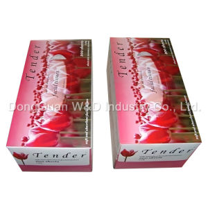 250sheets Soft Boxed Facial Tissue From Dongguan (WD013-BT250/2) pictures & photos