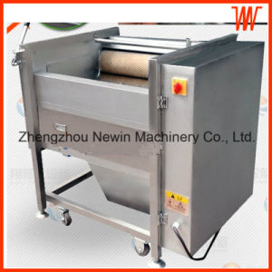 Stainless Steel Brush Carrot Washing and Peeling Machine pictures & photos