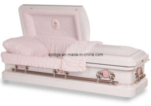 Steel Casket pictures & photos