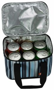 Can Cooler Bag/Ice Bag/ Picnic Bag pictures & photos