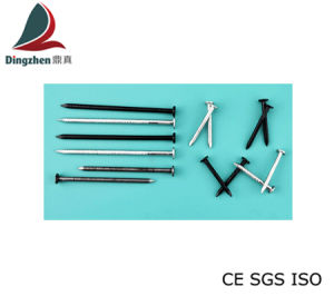 Galvanized Ring Shank Nails for Construction and Decoration