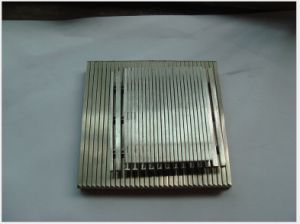 Flat Screens/ Wedge Wire Panel Manufacturer (ISO) pictures & photos