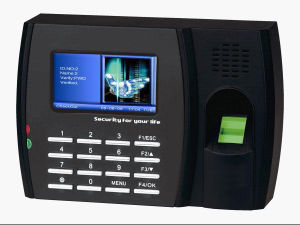 Color Screen Fingerprint Time Attendance with TCP/IP (TA01)