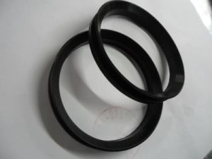 NBR HNBR Viton Gasket pictures & photos