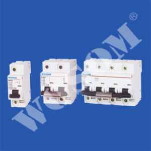 Miniature Circuit Breaker (WSM-100 Series)