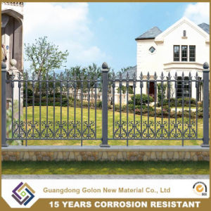 Professional Manufacturer Made Permanent Riverside Fencing pictures & photos