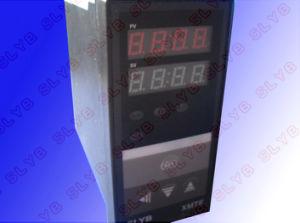 Xmte-3001/3002 Thermo Regulators/Temperature Controller