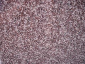 China Pink Granite G664 Flooring Tile pictures & photos