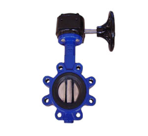 Cast Iron Lug Style Dn50 Pn16 Butterfly Valve pictures & photos