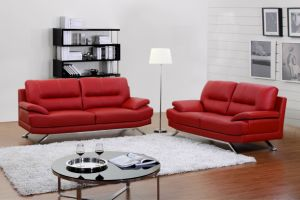 Leather Sofa (HAJ-88750#)