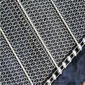 High Quality Stainless Wire Mesh Conveyor Belts (ISO9001) pictures & photos