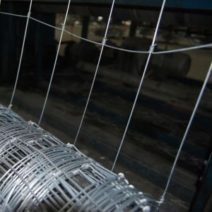 Hot Dipped Galvanized Farm Field Fence pictures & photos