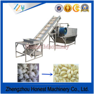 Competitive Price of Garlic Peeling Machine China Supplier pictures & photos