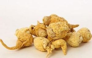 Factory Direct Supply 100% Natural Maca Extract--Maca P. E. on Sell pictures & photos