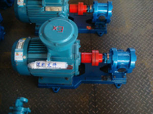 2cy High Pressure Hydraulic Oil Pump pictures & photos