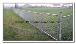 Chain Link Mesh pictures & photos
